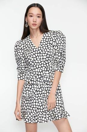 Graphic V-Neck Mini Dress