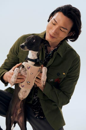 Jaspal Dog Print Harness